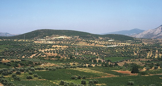 Nemea Valley Archaeological Project (NVAP)