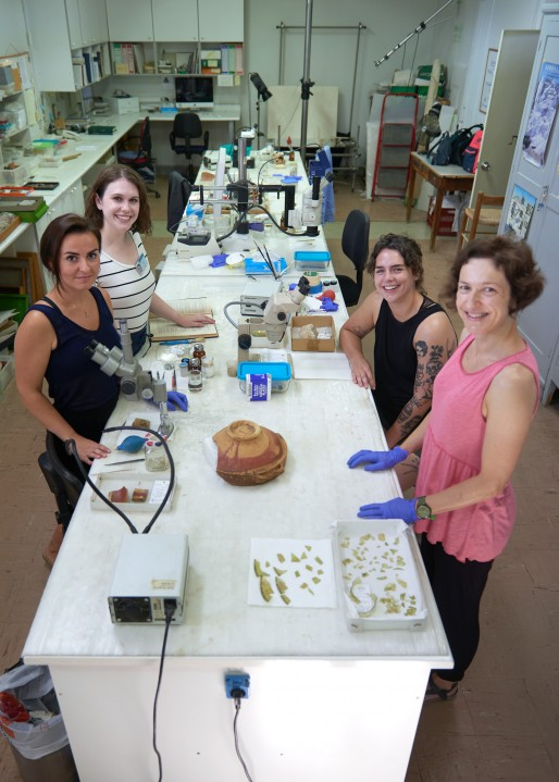 From the Trench to the Lab: Learning to Conserve Archaeological Material at the Agora